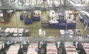 """注重品质加政策红利智利食品中国市场""""热度""""攀升"""